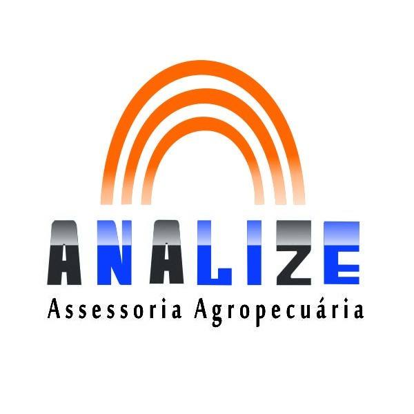 Analize logo